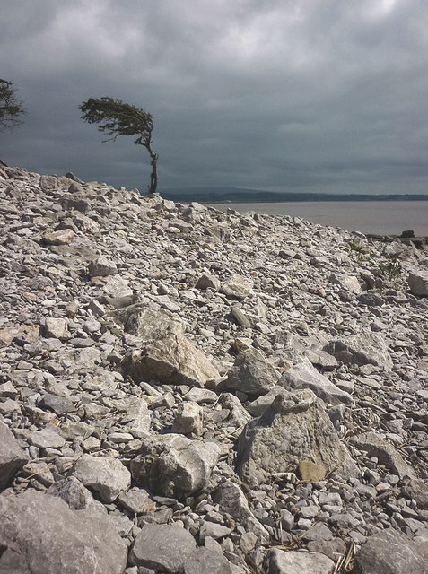Storm-washed rubble, Jenny Brown's Point