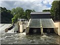 ST1380 : Radyr Weir Hydroelectric Scheme : Week 28