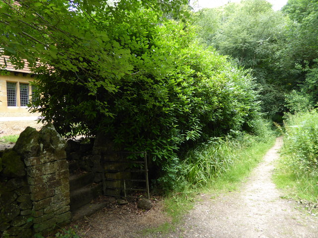 London Countryway in Kent (225)