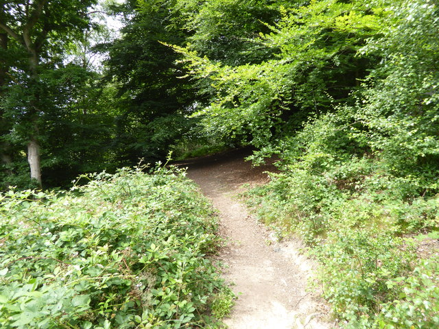 London Countryway in Surrey (1)