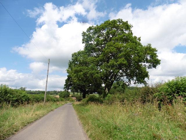 Partway Lane
