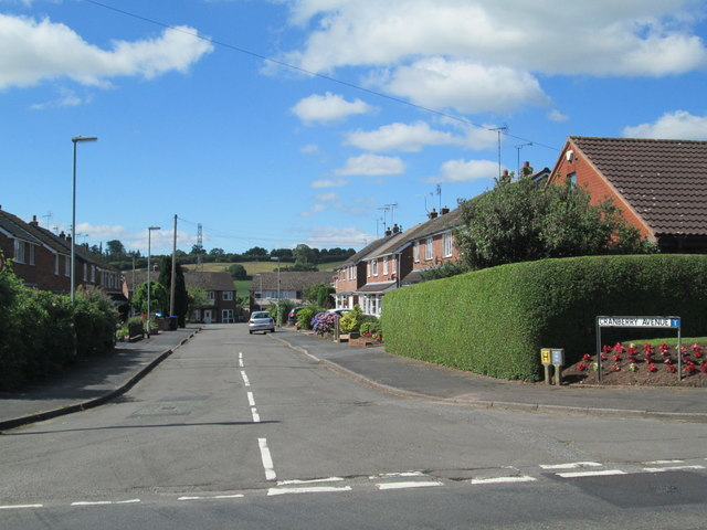 Cranberry Avenue, Checkley