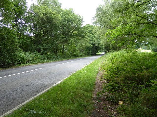 London Countryway in Surrey (4)