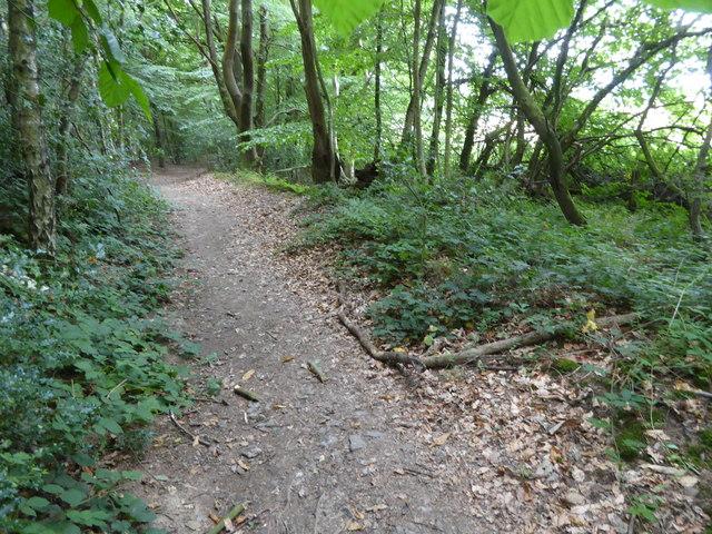 London Countryway in Surrey (14)