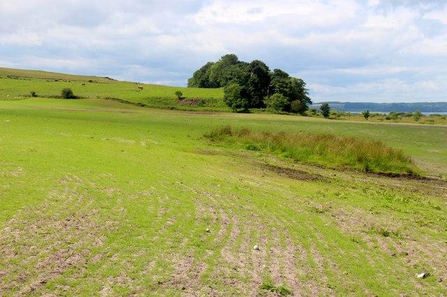 Arable farming near Graycraig Wood