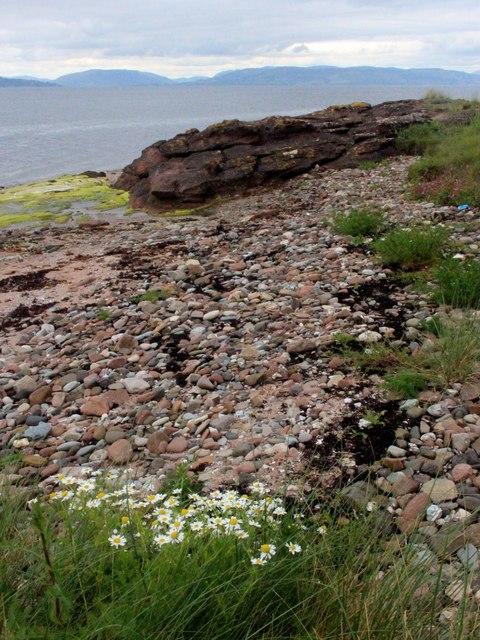 Shingle shore near Fintray Bay
