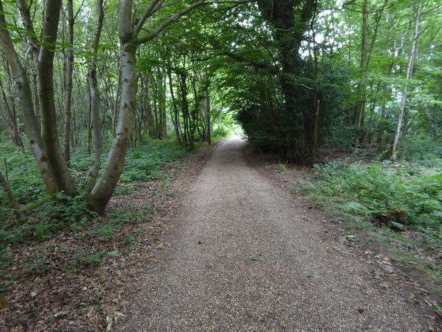 London Countryway in Surrey (20)