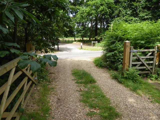 London Countryway in Surrey (21)