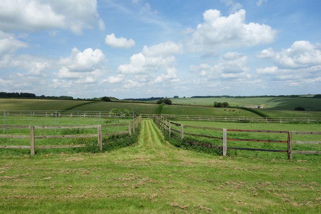 Fields and Paddocks near Fawley