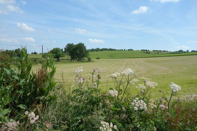 Farmland near Great Shefford