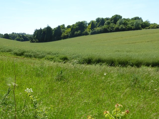 Arable land in the Coln valley