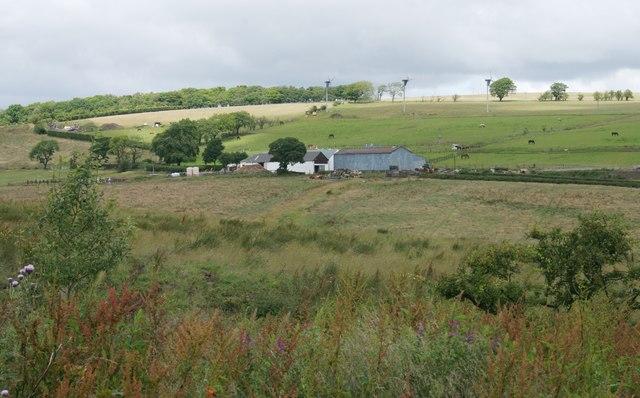 Capellie Farm