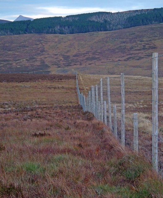 Fence below Cnoc Dail-chairn, Sutherland
