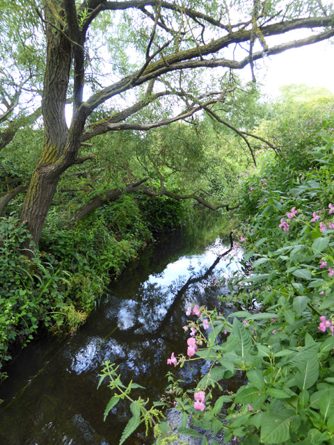 The Wraysbury River