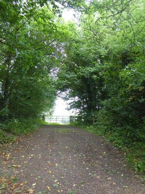Footpath south of Great Chalfield