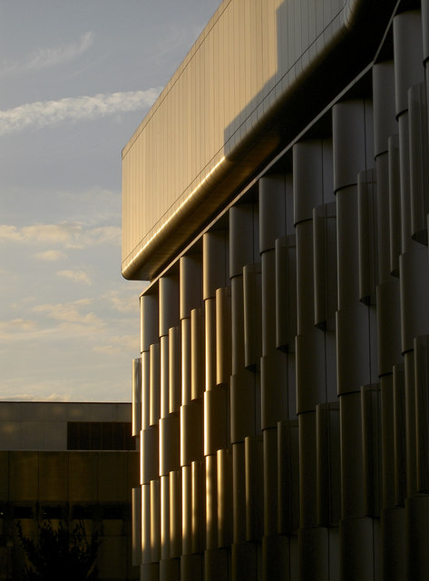 Light on the Life Sciences building