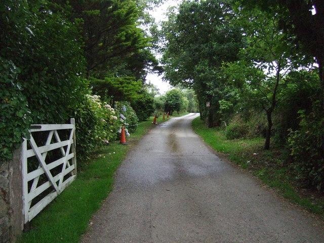 Byway towards Truthwell Farm