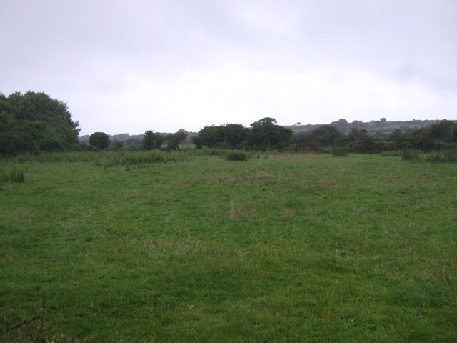 Grazing, North Tremayne