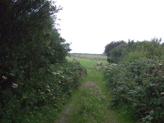 Track (footpath) off the B3280