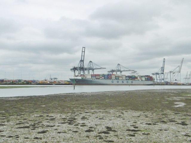 Southampton Docks, Cosco