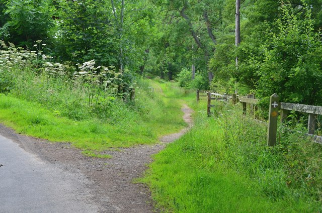 St Cuthbert's Way at Whitelee