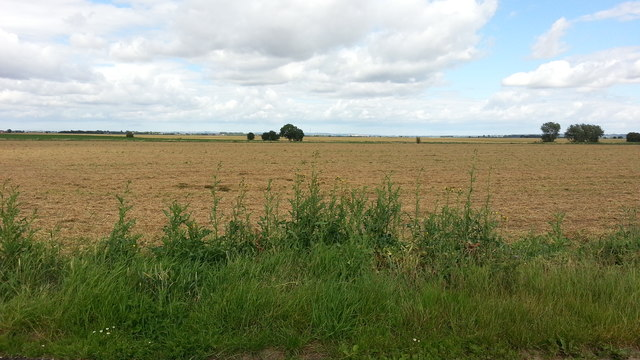 Fields off Quay Lane