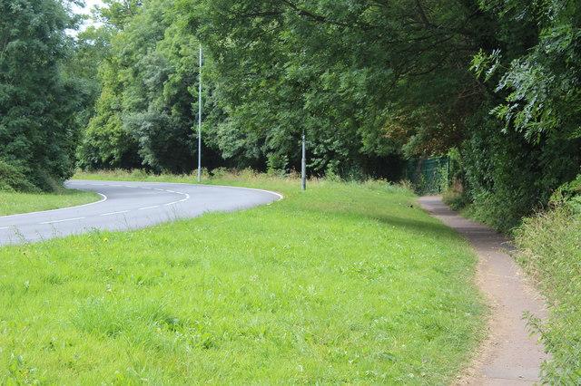 Path by Duffryn Drive