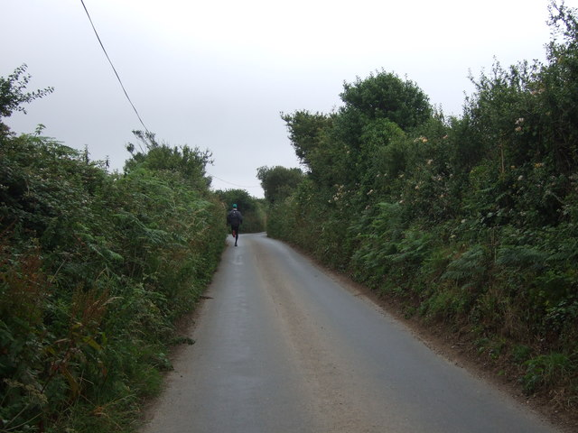 Tredrea Lane