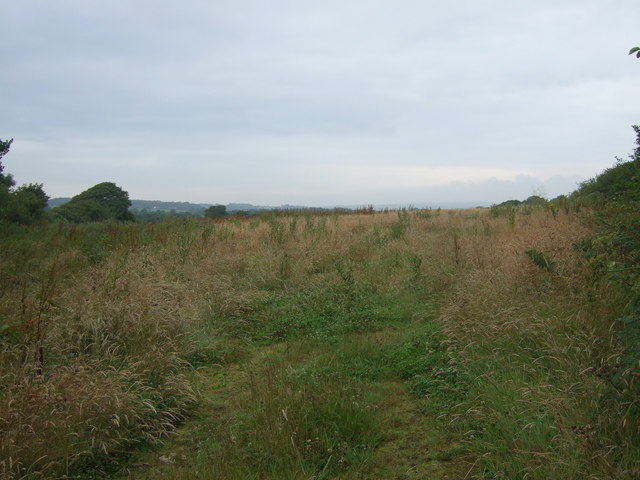 Farmland of Tredrea Lane