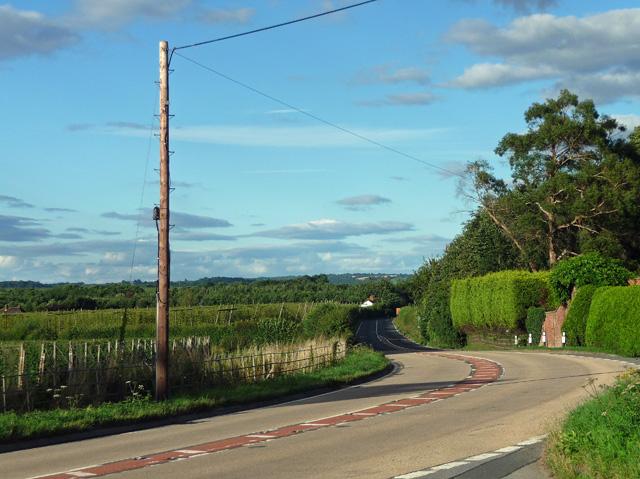Main road, Perton