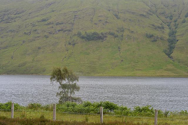 Looking across Loch a' Chroisg