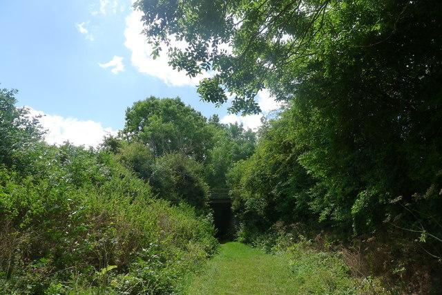 Footpath beneath abandoned railway line