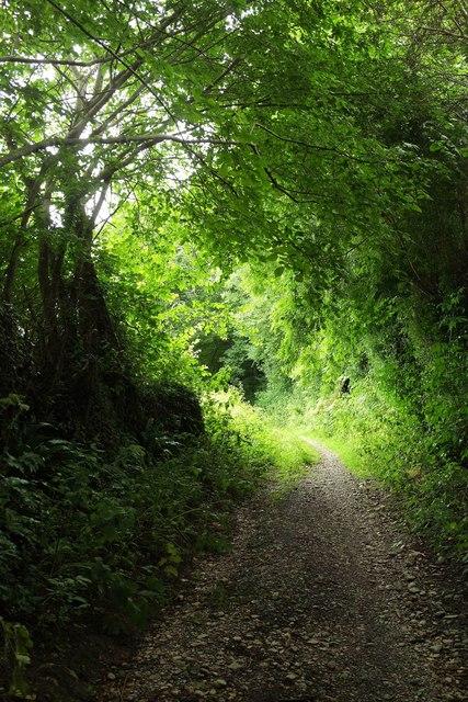 Alston Lane