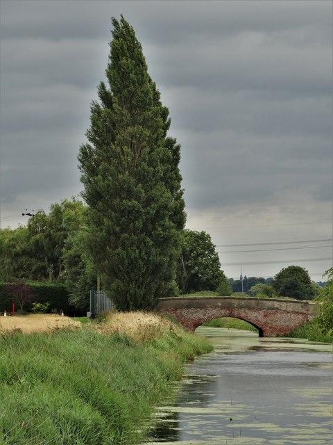 Pilfrey Farm - bridge over Hatfield Waste Drain