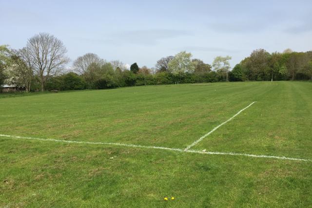 Playing field, Chadwick End
