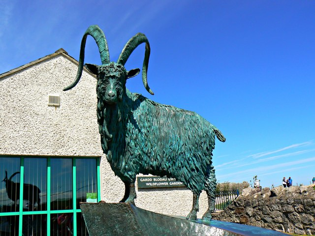 Goat sculpture, Great Orme Country Park Visitor Centre, Llandudno