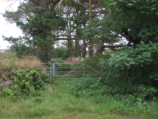 Gated entrance and footpath, Truthwall