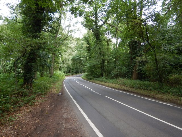 Minor Rural Road near Stanners Hill