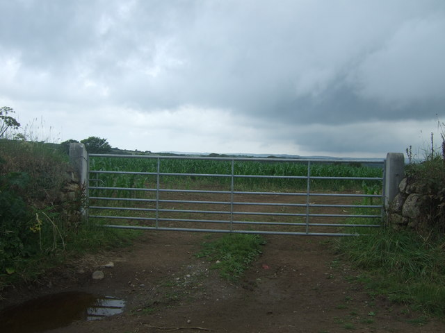 Field entrance near Tregadgwith