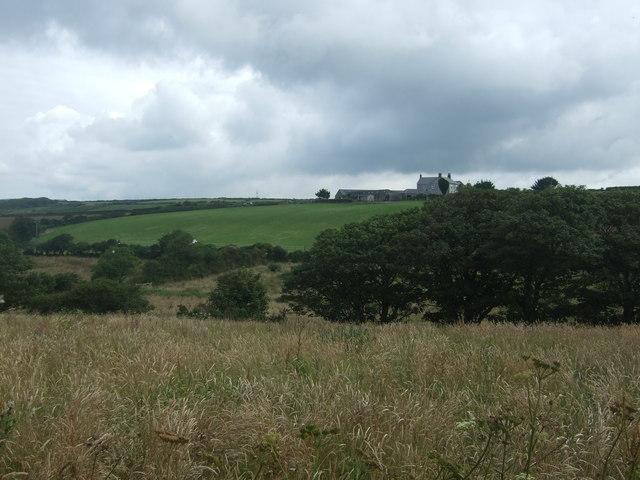 Grassland, Alsia