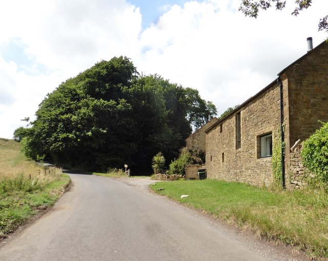 Butcher's Hill