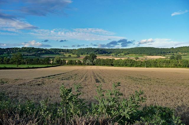 Farmland near Canon Pynon