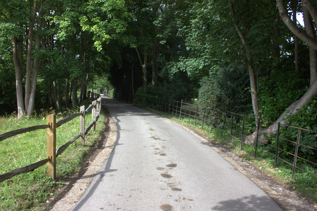 Road to Thorncroft Manor
