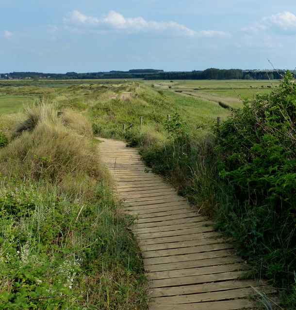 Boardwalk along the Norfolk Coast Path