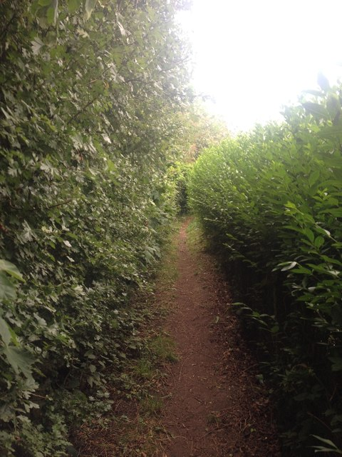 Path out of Linton