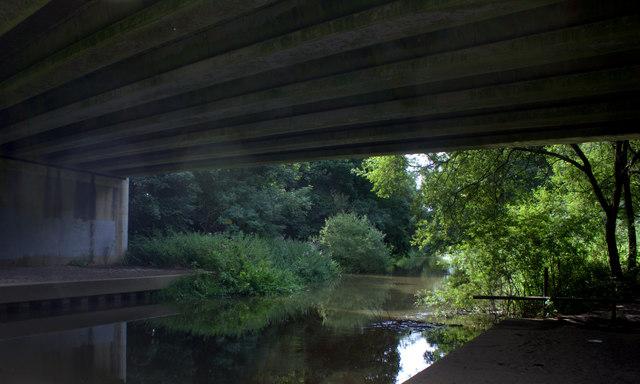 Mole Gap Trail under the A246 bridge