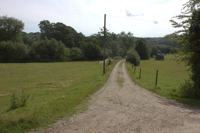 Bridleway to Norbury Park farm