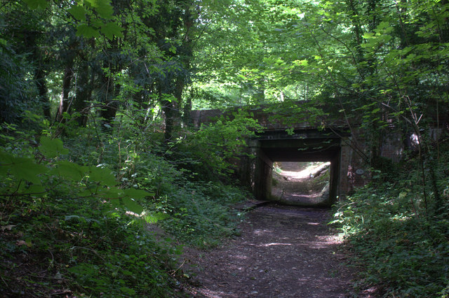 Mole Gap Trail, railway overbridge in the wood