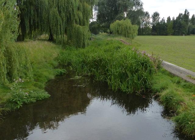 Saffron Brook near Knighton Park