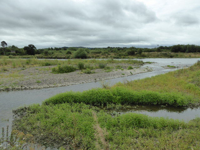 Part of Doydd Hafren Nature Reserve near Berriew